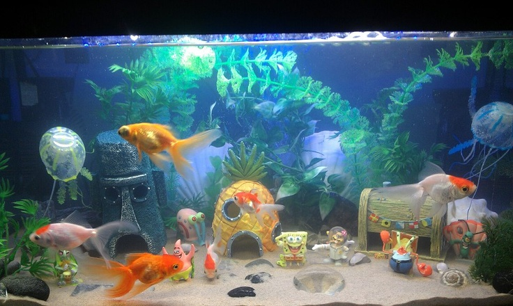 Aquarium Decorations-spunch-bob