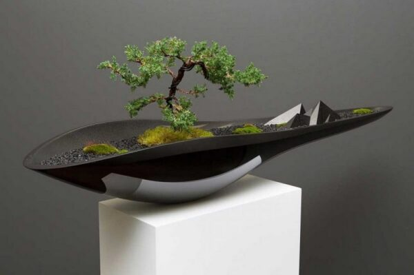 Bonsai Pots for Amazing Looking