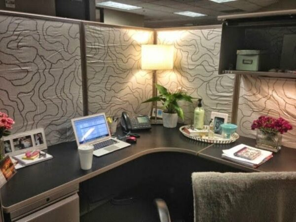 Cubicle Decorating Ideas with Classy Accent