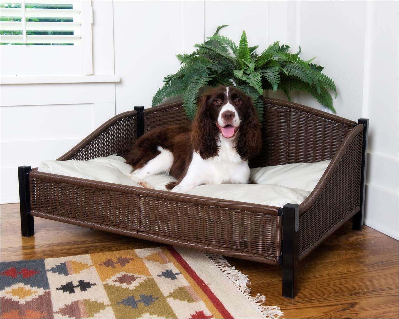 The Advantages of Elevated Dog Bed Furniture